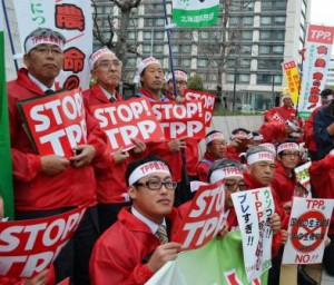 Participants in the rally are protesting against the TPP pact. (Nagata-cho, Tokyo)
