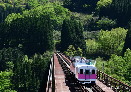 Takachiho Amaterasu Railway's Grand Super Cart crossing the 105-meter high Takachiho Iron Bridge. (in Takachiho Town, Miyazaki Prefecture)
