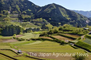 Tochimata Tanada Rice Terrace in Takachihogo-Shiibayama region is one of the Globally Important Agricultural Heritage Systems.
