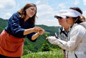 A trainee from the U.S. (left) helping tea plantation tours as a guide for overseas travelers (in Wazuka town, Kyoto)