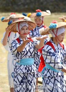 Students of Seiyo-City Shirakawa Junior High School performing Saotome dance