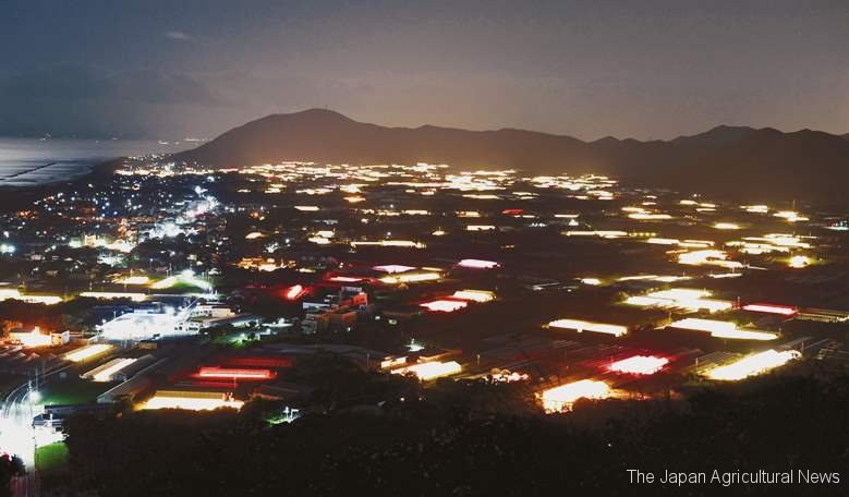 Akabane region in Tahara town, Aichi Prefecture, was illuminated by glowing chrysanthemum greenhouses. The light on the left is a residential area. (in Tahara town, Aichi Prefecture)