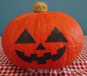 """Halloween Mix"" gerbera daisies from JA Hainan (in Chuo ward, Tokyo)"