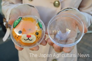 Gachapon from Ehime Prefecture contains a mandarin orange wrapped in film with a picture of local promotional character named Mican. (in Matsuyama city, Ehime Prefecture)
