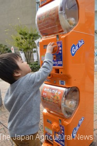 Kids love Mikan Gachapon!