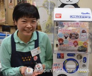 Umeboshi Gachapon at Wakayama Kishukan (in Chiyoda ward, Tokyo)