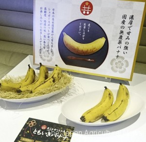 Tomoiki Banana, bananas with edible skin developed in Japan, are shown to the media in Tokyo's Minato Ward on April 18.