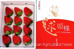 "Wakayama prefecture developed a new strawberry breed, and named it ""Marihime."""