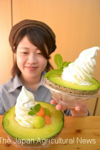 """Left is a """"Mega Mountain"""" sweet of a giant melon that weights 2kg. Right is an ordinary """"Melon Mountain""""."""
