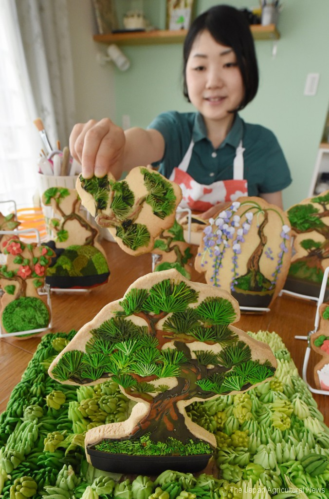 Ms. Hirai decorates bonsai with royal icing on cookies in Yokohama.