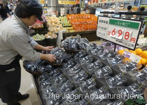 A higher-than-usual price tag is put on Kyoho grapes sold at a supermarket in Tokyo's Shinagawa Ward.