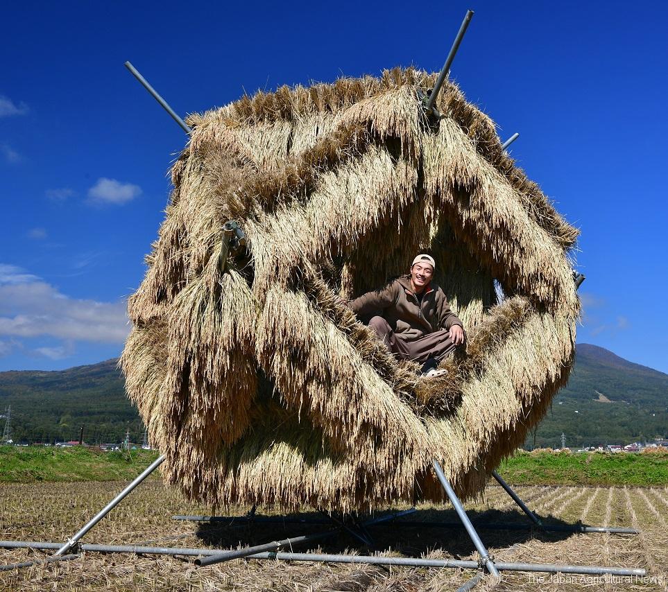 Mr. Tsuchiya poses in his 5-meter long icosahedron made of rice bundles in Fukushima.