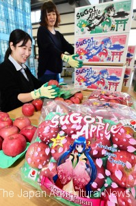 "Women are packing smaller-sized ""Sugoi"" apples for exports in Kuroishi, Aomori prefecture."