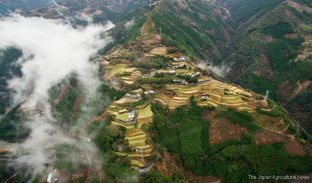 An aerial photo taken with a drone shows Sennin no Tanada, rice terraces in the village of Shiiba, Miyazaki Prefecture.