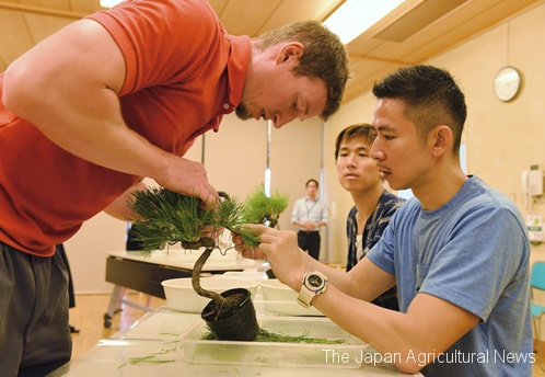 Adam Jones (left) helping a non-Japanese bonsai beginner making his own bonsai (in Saitama City, Saitama Prefecture)