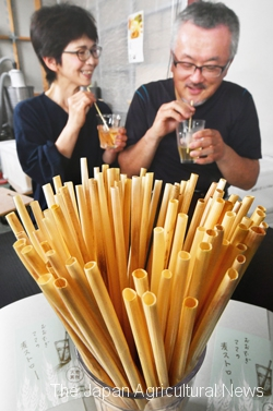 A current plastic straw for drinking is named after a straw as an agricultural byproduct. The new straws for drinking are made of natural materials. (in Fukui Town, Fukui Prefecture)