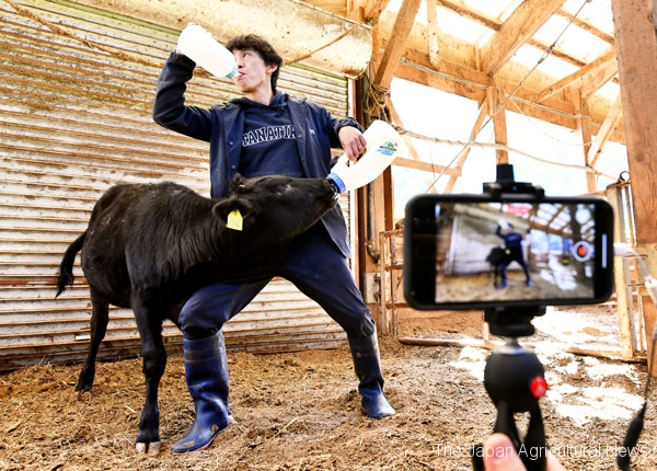 "Tanaka competing with his calf in a ""speed-drinking contest."" He often makes videos that clearly (and physically) illustrate the difference between cows and humans."