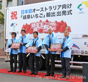 A ceremony is held in the city of Gifu on Feb. 25 to mark the first shipment of Gifu-grown strawberries to Australia.